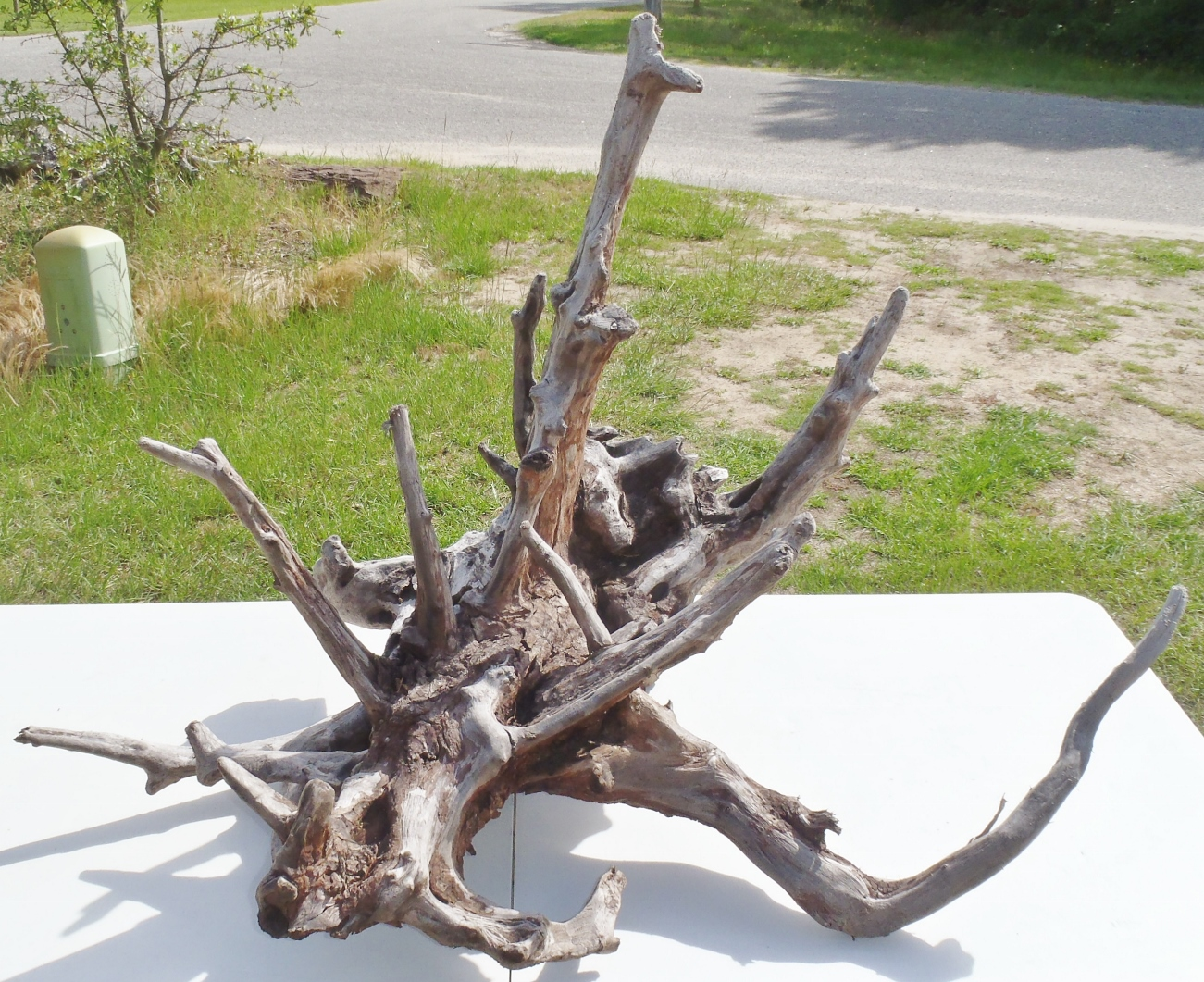 Outer Banks Obx Driftwood Pulled From The Waters Of The